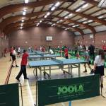 Primary Table Tennis Team Competition